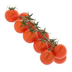 Vruchtgroenten