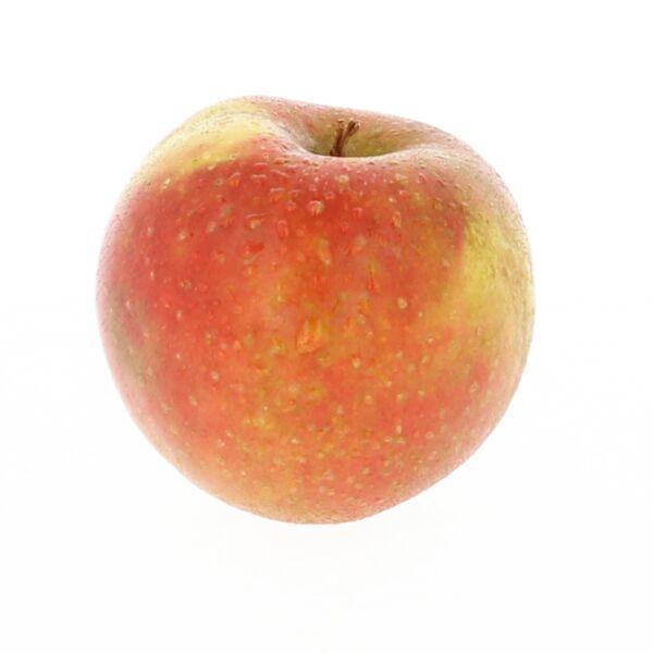 Jonagored appel
